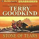 Stone of Tears: Sword of Truth, Book 2 | Livre audio Auteur(s) : Terry Goodkind Narrateur(s) : Jim Bond