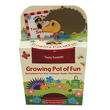 Childrens Grow Your Own Tasty Tomatoes with Hedgehog Plant Marker