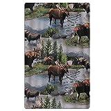 Cananhjs Bull Moose Nature Scenic Wildlife Animals Lake