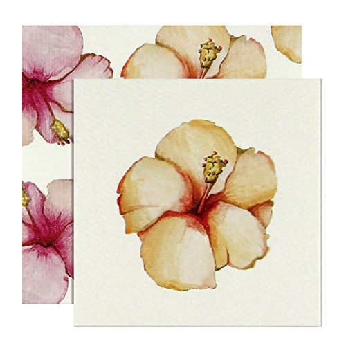 C.R. Gibson Cid Pear Gift Enclosure Cards - Pack of 12, Hibiscus Flower (CID4-10353)