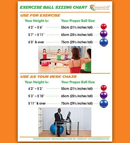 posture pump 2000 instructions