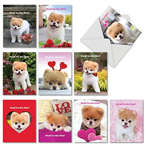 Assorted Boxed of 10 'Boo My Happy Valentine's Day Note Cards 4 x 5.12 inch w/Envelopes - Featuring Images of Boo The World's Cutest Dog Giving Flowers and Hearts with Love AM6754VDG-B1x10 (Images Of Cutest Puppies In The World)