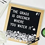 Black Felt Letter Board. Changeable Quote Board Includes 340 Letters Emojis and Symbols, Oak Wood Frame 10x10 Inches, Wall Mount, Scissors, and Bag.