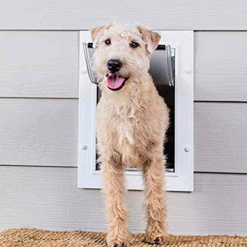 PetSafe New Wall Entry Dog and Cat Door - Pet Door with Telescoping Tunnel - Medium