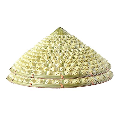Sunny Hill Pack of 2 Chinese Oriental Bamboo Pineapple Cap Straw Cone Garden Fishing Hat ()
