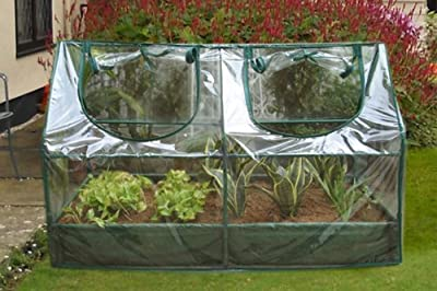 Zenport SH3212A+BTP Garden Raised Bed and Cold Frame Greenhouse Cloche for Easy Access Protected Gardening from Zenport