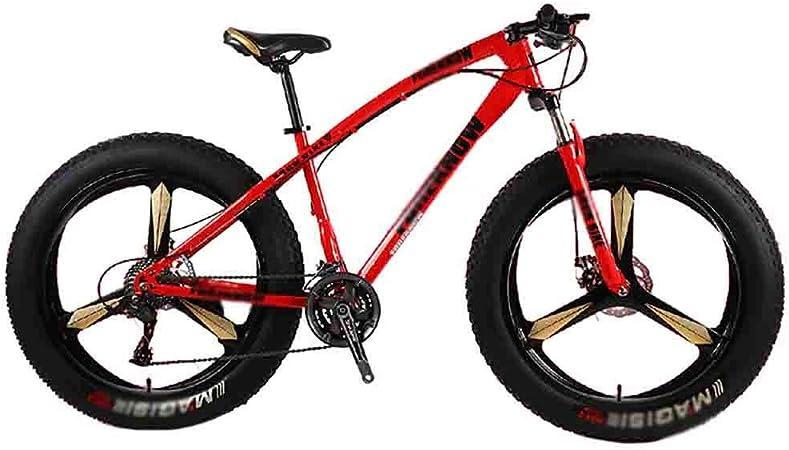 Mountain Bike Bicicleta para joven Bicicleta MTB de adultos playa de motos de nieve Bicicleta Bicicletas bicicletas de montaña for hombres y mujeres de 26 pulgadas ruedas ajustables velocidad doble fr: Amazon.es: