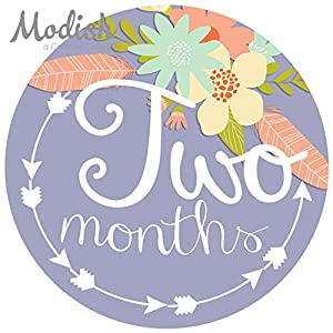 12 Monthly Baby Stickers, Tribal, Flowers, Feathers, Arrows, Girl, Baby Belly Stickers, Monthly Onesie Stickers, Baby Month Stickers, Arrows, Flowers, Tribal, Pink, Mint, Purple, Teal, Blue, Girl 3