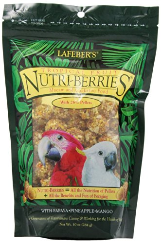 Lafeber Company Tropical Fruit Nutri-Berries for Macaws, ...