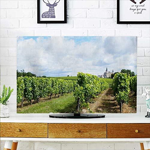 aolankaili Cover for Wall Mount tv The Vineyard in The Bordeaux Area Cover Mount tv W20 x H40 INCH/TV 40