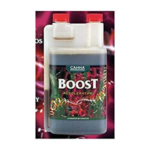 Canna Boost Accellerator 1 Lt