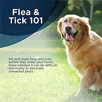 Bayer Seresto Flea & Tick Collar For Large Dog- From 7 Weeks Onwards Or Over 18 Lb, 8 Month Protection 16