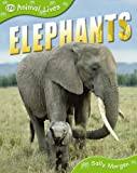 img - for ANIMAL LIVES: ELEPHANTS (QED ANIMAL LIVES) book / textbook / text book