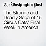 The Strange and Deadly Saga of 15 Circus Cats' Final Week in America | Karin Brulliard