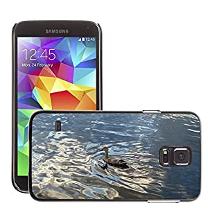 Etui Housse Coque de Protection Cover Rigide pour // M00108588 Nubes Tiempo Lago Sun Mirroring // Samsung Galaxy S5 S V SV i9600 (Not Fits S5 ACTIVE)