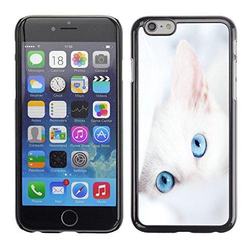 TaiTech / Case Cover Housse Coque étui - Cat White Kitten Blue Eyes Portrait Mongrel - Apple iPhone 6