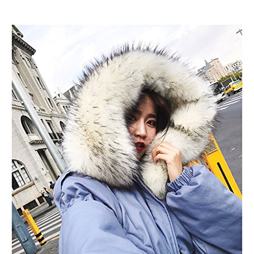 TSINY G Women's Loose BF Style Hooded Cotton Jacket Winter Warm Coats ( Color : Blue , Size : M ) by TSINY G (Image #2)