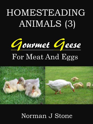 Homesteading Animals (3): Gourmet Geese - Raising Geese For Meat, Eggs and Feather Pillows! by [Stone, Norman J]