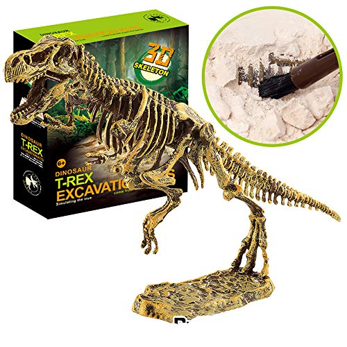 Huikai Science Educational Dinosaur Fossil Dig Kit Toys for Kids, Kids Dinosaur Fossil Digging Excavation Tools (Tyrannosaurus ()