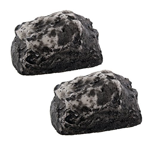- Hide-a-Key Fake Rock - Looks & Feels Like Real Rock, Set of 2