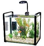 Pen-Plax WW102KG Parallel Designer Glass Aquarium Includes Led Light with Safety Lid, 8 gallon, Grey