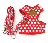 SMALLLEE_LUCKY_STORE CWYP00068-Red-S New Soft Mesh Nylon Vest Pet Cat Small Medium Dog Harness Dog Leash Set Leads ,Red , S
