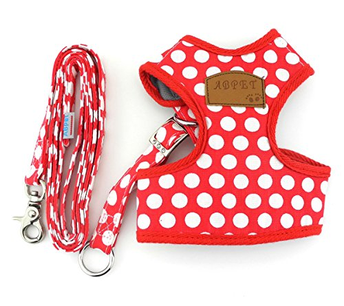 SMALLLEE_LUCKY_STORE New Soft Mesh Nylon Vest Pet Cat Small Medium Dog Harness Dog Leash Set Leads Red L