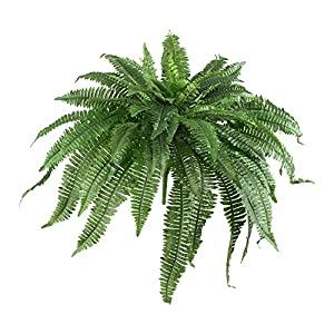 "Nearly Natural 6051-S2 48"" Boston Fern (Set of 2), 2 Piece 9"
