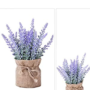 YAPASPT 2 Pack Small Burlap Potted Lavender Flowers - Artificial Fake Flower and Plant Flocked Charming Purple for Warm and Loving Home or Venue Decor 4