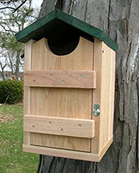 Songbird Essentials Screech Owl House Nest Box by Songbird Essentials