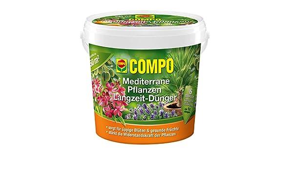 Compo Plantas Mediterráneas largo tiempo de Abono 1,5 kg: Amazon.es: Electrónica