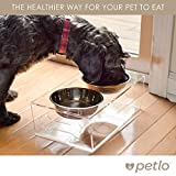 Raised Pet Feeder Bowls - Elevated Clear Acrylic Feeding Stand with Stainless Steel Food and Water Bowls for Small Dogs and Cats - By Petlo
