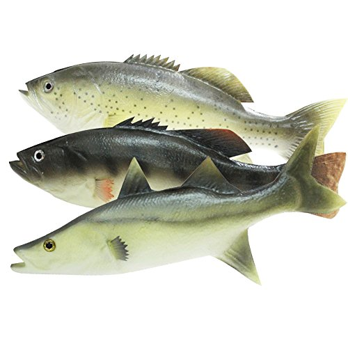 (Enxee 3pcs Simulated Fish Model, Lifelike Pretend Play Fish Set for Kitchen Decoration Home Decoration Store Party Display Kids Teaching Learning Toy Tools Photography)