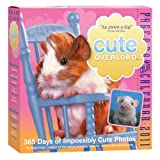 Cute Overload Page-A-Day Calendar 2011