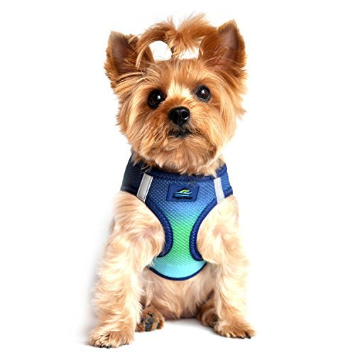 ULTRA CHOKE FREE STEP IN REFLECTIVE DOG HARNESS ★ AMERICAN RIVER OMBRE NORTHERN LIGHTS ★ ALL SIZES (XS) ()