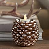 Pine Cone Taper Candle Stick Holder, 3.5 x 4 inches for Christmas or Everyday