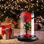LOVLO-Eternal-Rose-Handmade-Real-Rose-Preserved-Flower-with-Beautiful-Glass-Dome-Romantic-Gift-for-Valentines-Day-AnniversaryBirthdayMother-Day-Christmas