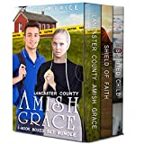 Lancaster County Amish Grace 3-Book Boxed Set Bundle (Lancaster County Amish Grace Series 4)