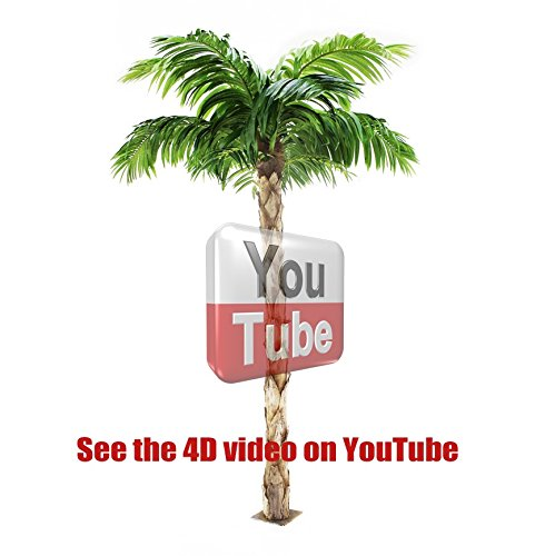 Vogue Plants Quality Artificial Peruvian Palm Tree 8ft Tall, Replica Indoor/Outdoor - 240cm Tall