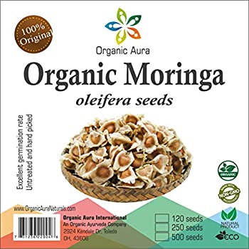 Amazon.com: Semillas de Moringa Oleifera no OMG PKM1 calidad ...