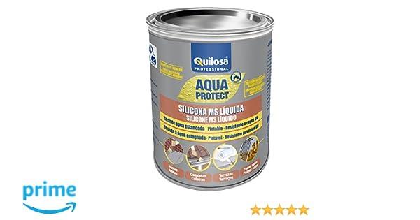 Quilosa T003095 Silicona Ms Liquida, Negro, 1 kg: Amazon.es: Bricolaje y herramientas