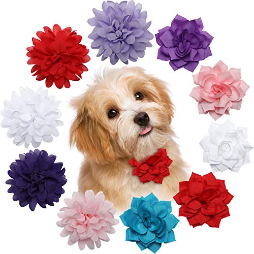 10 Pieces Dog Collar Flowers Multicolored Pet Flower Bow Tie Multi-Color Dog Charms Flower Set for Puppy Dog Collar Cat Grooming Accessories