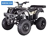BRAND New TAO TAO - RHINO 250 Adult Size ATV with standard manual clutch and reverse