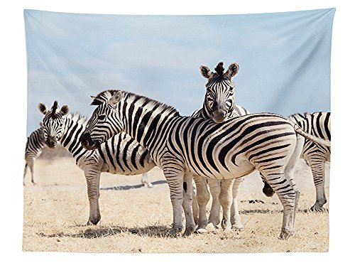 42 Savannah 3 Light (vipsung Wildlife Decor Tablecloth Three Zebras In National Park Savannah Safari Dining Room Kitchen Rectangular Table Cover)