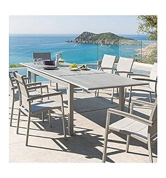 Table extensible Azua en bois 12 personnes gris / silver mat ...