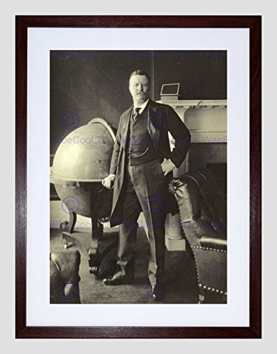 VINTAGE PORTRAIT PRESIDENT THEODORE ROOSEVELT BLACK FRAMED ART PRINT B12X11826 (Portraits Roosevelt Theodore)