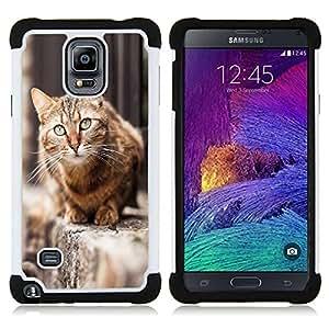 """Pulsar ( Furry Casa del gato de pelo corto británico calle"""" ) Samsung Galaxy Note 4 IV / SM-N910 SM-N910 híbrida Heavy Duty Impact pesado deber de protección a los choques caso Carcasa de parachoques"""