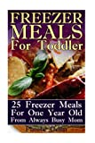 Freezer Meals For Toddler: 25 Freezer Meals For One Year Old From Always Busy Mom