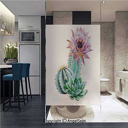 Window Door Sticker Glass Film,Cactus Spikes Flower in Hot Mexican Desert Sand Botanic Natural Image Anti UV Heat Control Privacy Kitchen Curtains for Glass, 22.8 x 35.4 inch,Pink Green and Blue