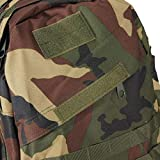 Large load Molle 3D Outdoor Military Rucksack Backpack Bag Camping Hiking WoodLand CAMO Green Color